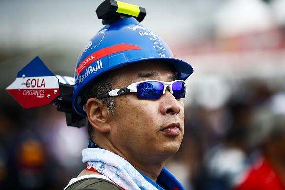 Toro Rosso Honda fan